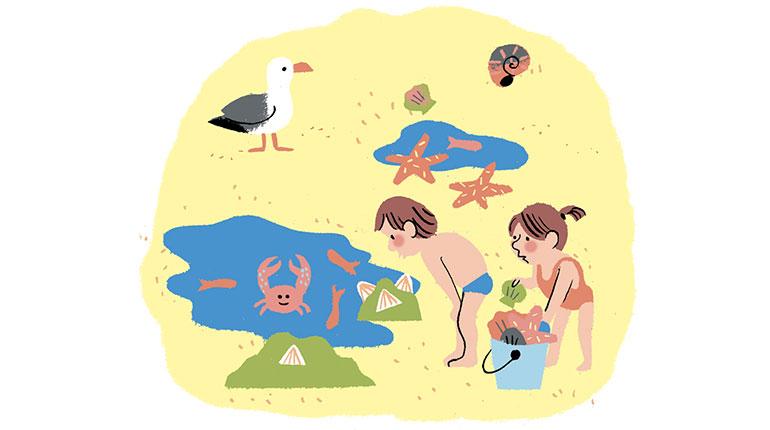 L'éveil de bébé l'été. Illustration : Anne Hemstege