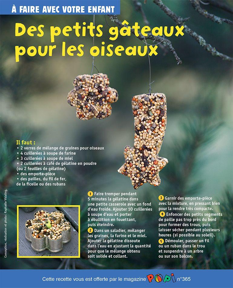 """""""Des petits gâteaux pour les oiseaux"""", supplément pour les parents du magazine Popin°365, janvier2017. Conception, réalisation et photo: Raphaële Vidaling."""