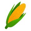 Popi n°420 - L'imagier du jaune : le maïs